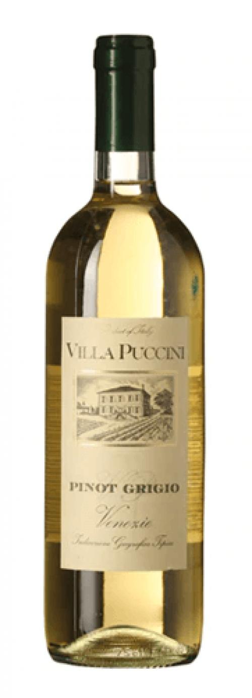 2019 Villa Puccini Pinot Grigio 750ml