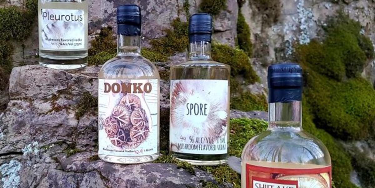 Free Tasting of Mushroom Vodka & LNJ Brands